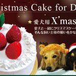 愛犬用クリスマスケーキ